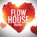 8Dio – Flow House Synth (KONTAKT)