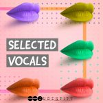 Audentity Records – Selected Vocals (WAV)